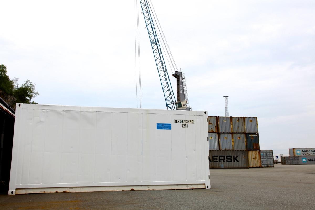 Container-skadedyr
